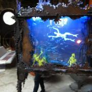 Découpages dans l'aquarium