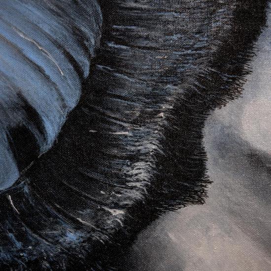 La grande huitre cosmique/ Détail : le frou-frou des lèvres/photo Alain Dussarat