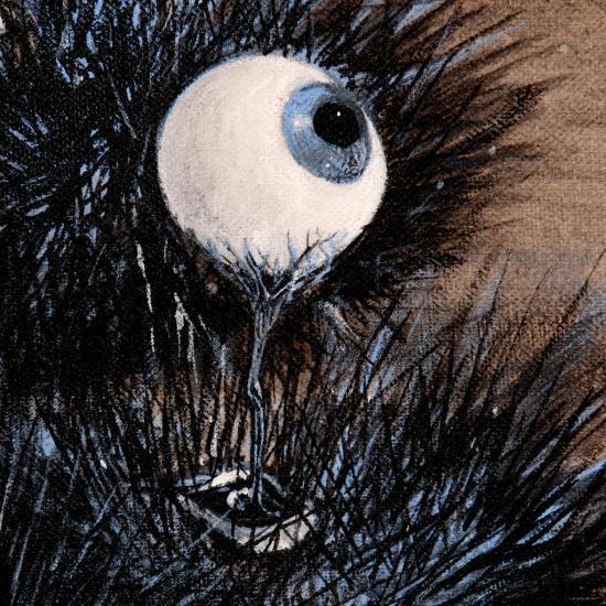 Le regard des oursins / Détail : l'oeil de vulve ombilical/ photo: Alain Dussarat