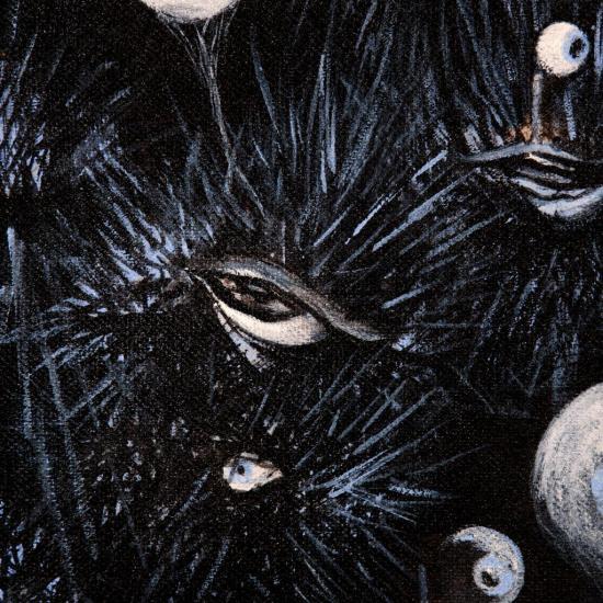 Le regard des oursins/Détail: la vulve piquante/Photo Alain Dussarat.